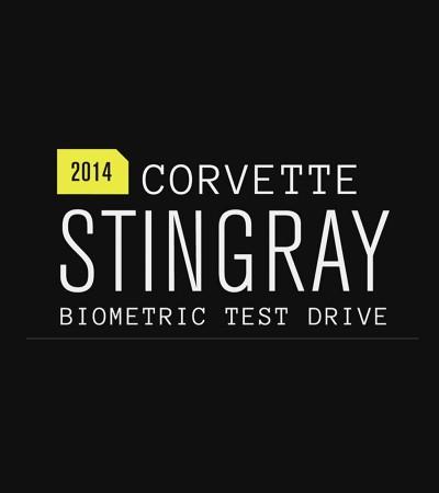 Corvette x Wired